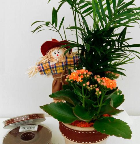 arte floral en lorea - Composiciones Florales