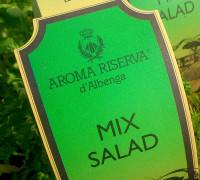 Plantas aromáticas  MIS SALAD